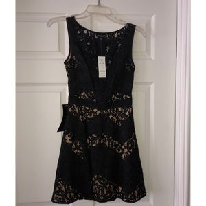 Bebe Black Mini Lace Dress (New with Tags)